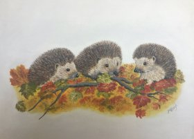 "Margaret Boyd: ""Hedgehogs in Autumn Leaves"""