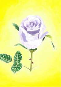David Brocklehurst: Purple Rose