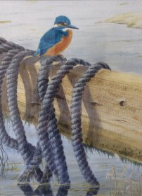 "Jean L Grew: ""Kingfisher"""
